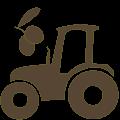 Azienda agricola – il miele, l'olio di oliva e i nostri prodotti